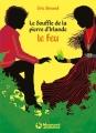 Couverture Le souffle de la pierre d'Irlande, tome 1 : Le feu Editions Magnard (Jeunesse) 2016