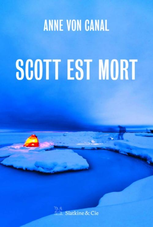 Couverture Scott est mort