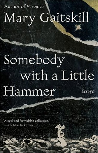 Couverture Somebody with a Little Hammer: Essays
