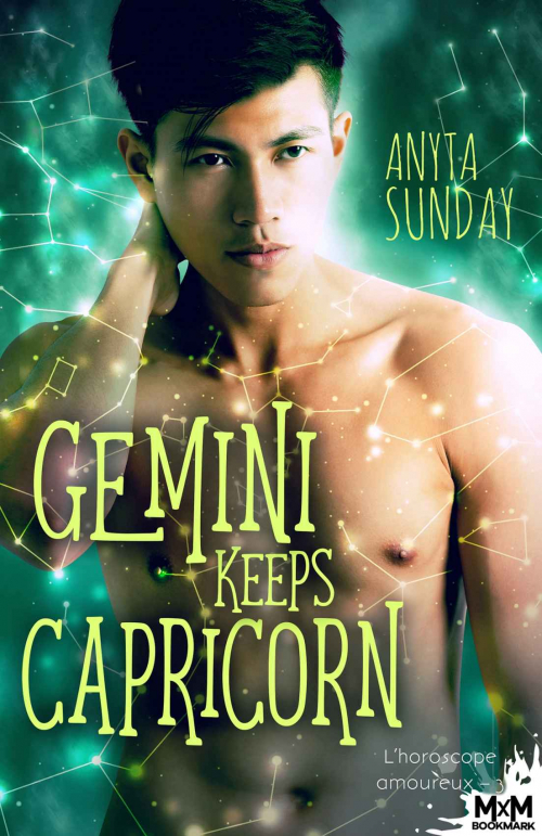 Couverture L'horoscope amoureux, tome 3 : Gemini Keeps Capricorn