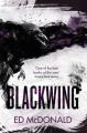 Couverture Blackwing, tome 1 : La marque du corbeau Editions Gollancz 2018