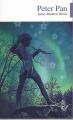 Couverture Peter Pan (roman) Editions Lire c'est partir 2009