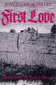 Couverture Premier Amour Editions Ecco 1997