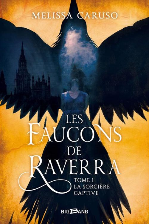 Couverture Les faucons de Raverra, tome 1 : La sorcière captive
