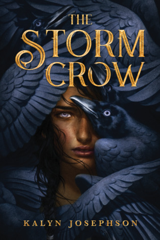 Couverture The Storm Crow