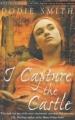 Couverture Le Château de Cassandra / Trois femmes dans un château Editions Red Fox 2001