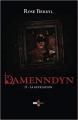 Couverture Damenndyn, tome 2 : Damenndyn et la révélation / La révélation Editions CKR 2019