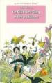 Couverture Le club des cinq et les papillons Editions Hachette (Bibliothèque rose) 1994
