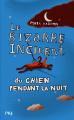 Couverture Le Bizarre Incident du chien pendant la nuit Editions Pocket (Jeunesse) 2019