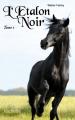 Couverture L'étalon noir Editions Hachette (Aventure) 2012