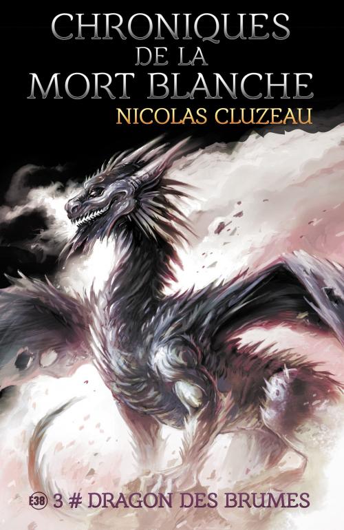 Couverture Chroniques de la mort blanche, tome 3 : Dragon des brumes