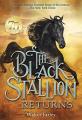 Couverture Le retour de l'étalon noir Editions Yearling 2011