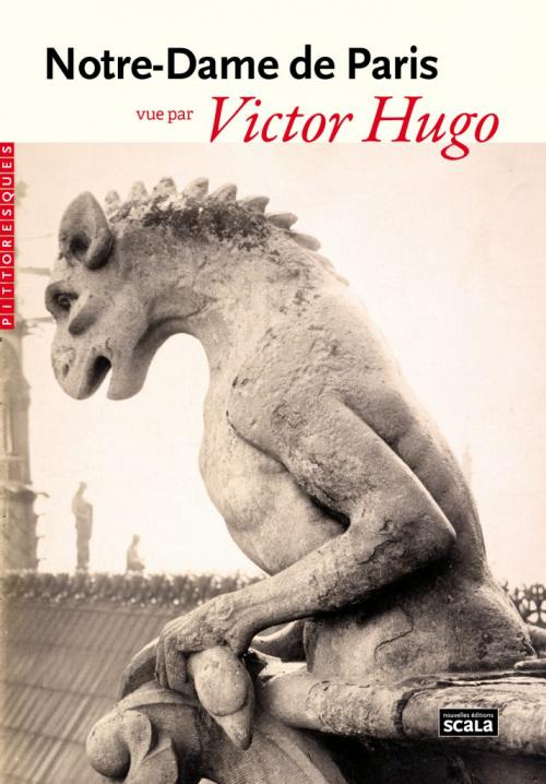 Couverture Notre-Dame de Paris vue par Victor Hugo