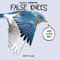 Couverture False Knees Editions Lapin 2019