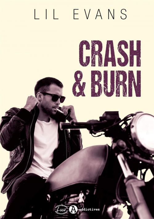 Couverture Crash & burn : Inaccessible