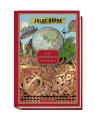 Couverture L'île mystérieuse (3 tomes), tome 1 : Les naufragés de l'air Editions RBA (Hetzel) 2019