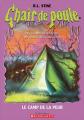 Couverture Le camp de la peur / La colo de la peur Editions Scholastic 2005