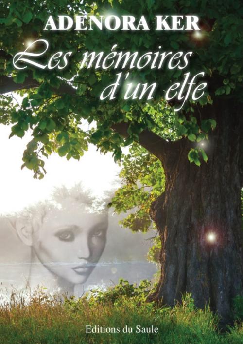 Couverture Les mémoires d'un elfe