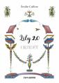 Couverture Lily 2.0, tome 2 : Solstice d'Eté Editions Caouanne 2019
