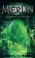 Couverture Merlin, cycle 1, tome 4 : Le miroir du destin Editions AdA 2014