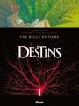 Couverture Destins, tome 07 : Une belle histoire Editions Glénat (Grafica) 2010