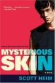 Couverture Mysterious Skin Editions Harper Perennial 2005