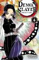 Couverture Les rôdeurs de la nuit / Demon Slayer, tome 06 Editions Panini (Manga - Shônen) 2020