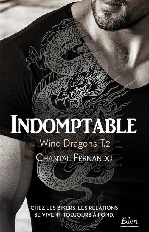 Couverture Wind dragons, tome 2 : L'enfer d'Arrow / Indomptable