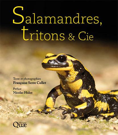 Couverture Salamandres, tritons & cie