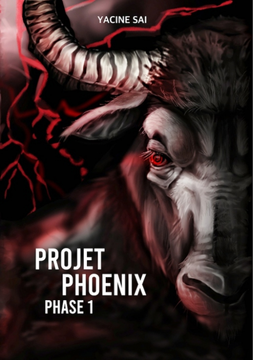Couverture Projet Phoenix : Phase 1