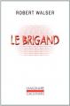 Couverture Le brigand Editions Gallimard  (L'imaginaire) 1994