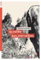 Couverture La vallée aux merveilles Editions du Rouergue (doAdo) 2020