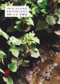 Couverture Inio Asano Anthology Editions Kana 2020