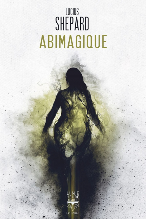 Couverture Abimagique