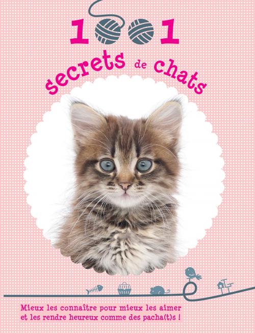 Couverture 1001 secrets de chats