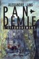 Couverture Pandemie, L'Effondrement Editions Autoédité 2016