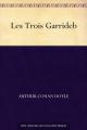 Couverture Les Trois Garrideb Editions Une oeuvre du domaine public 2011
