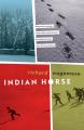 Couverture Jeu blanc / Cheval Indien Editions Douglas & McIntyre 2012