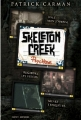 Couverture Skeleton creek, tome 1 : Psychose Editions Bayard (Jeunesse) 2011