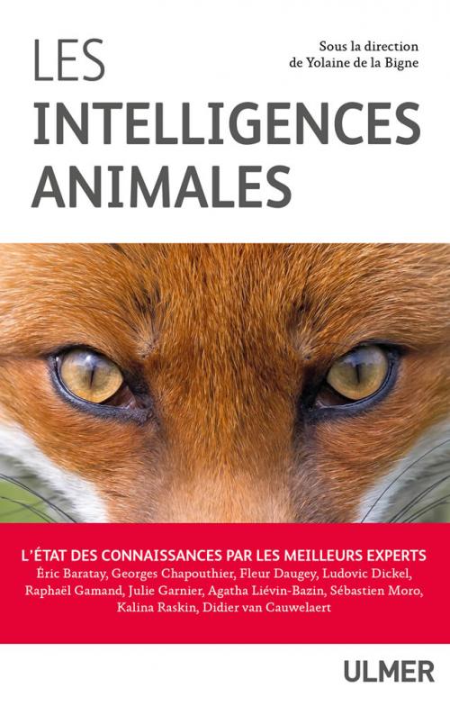 Couverture Les Intelligences Animales