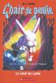 Couverture Le coup du lapin / Un magicien plein de malice Editions Scholastic 2005
