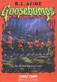 Couverture Quand les esprits s'en mêlent / Les fantômes de la colo Editions Scholastic 2003
