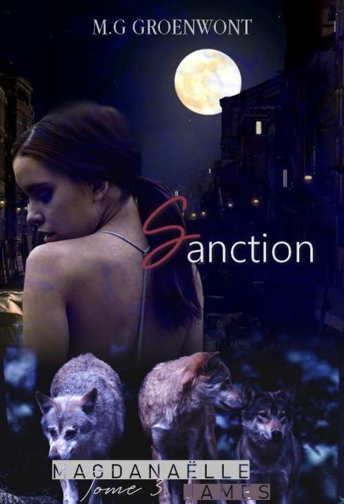 Couverture Magdanaëlle James, tome 3 : Sanction