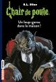 Couverture Un loup-garou dans la maison ! Editions Bayard (Frisson) 2017