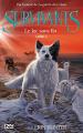 Couverture Survivants, cycle 1, tome 5 : Le lac sans fin Editions 12-21 2017