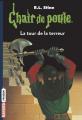 Couverture La tour de la terreur / Les pierres magiques Editions Bayard (Frisson) 2018