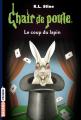 Couverture Le coup du lapin / Un magicien plein de malice Editions Bayard (Frisson) 2018