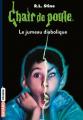Couverture Le jumeau diabolique Editions Bayard (Frisson) 2017