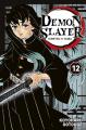 Couverture Les rôdeurs de la nuit / Demon Slayer, tome 12 Editions Panini (Manga - Shônen) 2020