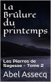 Couverture Les Pierres de Sagesse, tome 2 : La Brûlure du printemps Editions Autoédité 2020
